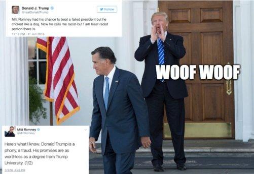 woof3